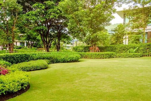 Bien choisir sa fontainede jardin : quels sont les critères à suivre?
